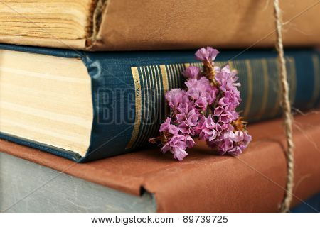 Stack of books with dry flowers close up