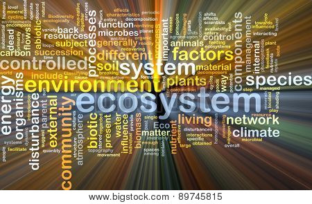 Background text pattern concept wordcloud illustration of ecosystem glowing light