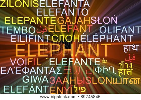 Background concept wordcloud multilanguage international many language illustration of elephant glowing light