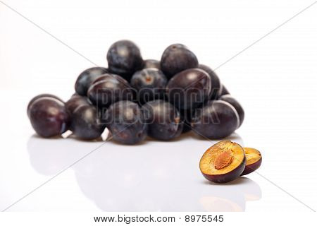 plum study