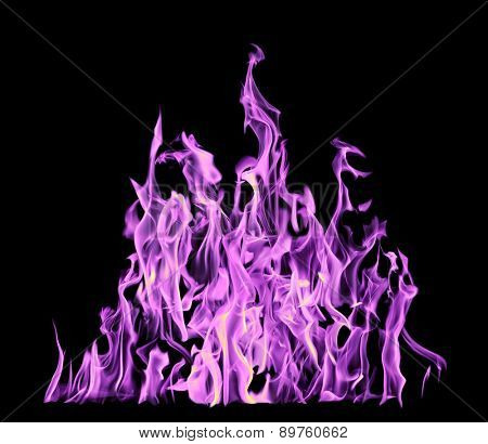 high lilac flame isolated on black background