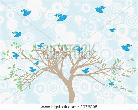 Multiple Blue Birds Perch And Fly Around Tree Abstract Sky And Clouds