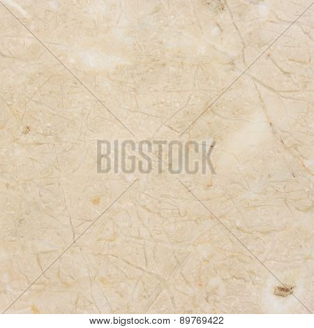 Cream Marble background.