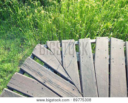 Nice Grassland