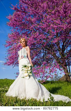 Beautiful Bride Blonde Outdoors In A Park