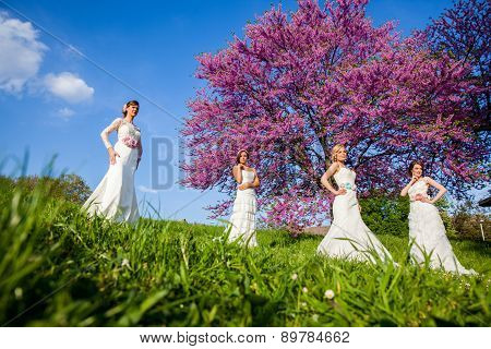 Beautiful Four Young Brides Together