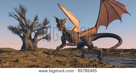 dragon in desert