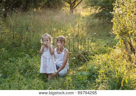 Summer Portrait Of Sibling Children Are In Old Apple Orchard