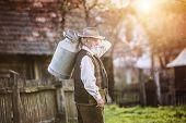 picture of kettling  - Senior farmer carrying kettle for milk on his back - JPG