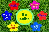 pic of politeness  - Be polite message on colorful flowers and green shrub background - JPG