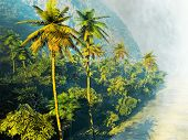 picture of rainforest  - Beautiful rainforest with palm trees - JPG