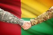 stock photo of guinea  - Soldiers shaking hands with flag on background  - JPG
