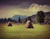 pic of hayfield  - Hay in a village in the mountains at summer - JPG