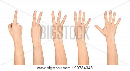 Counting Hands On The Finger Of One To Five Isolated On White Background