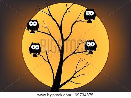 Owl on tree in night on halloween. Vector illustration
