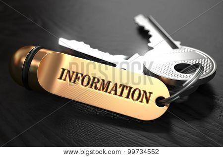 Information Concept. Keys with Golden Keyring.