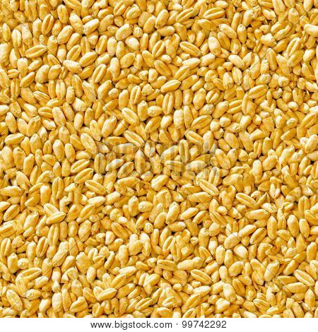 Seamless grain closeup background.