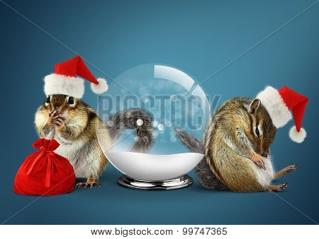 Funny Animals Chipmunks Dress Santa Hat With Snow Ball And Bag, Christmas Concept