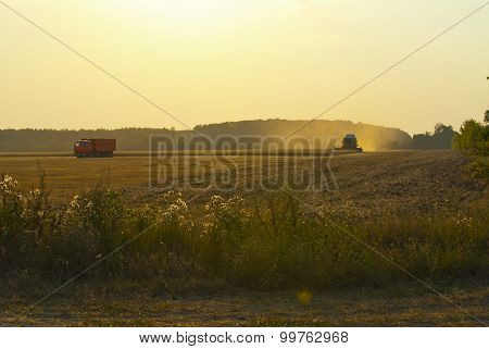 Harvester In The Field Gather The Harvest