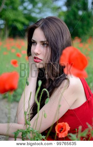 Beautiful Brunette With Poppies