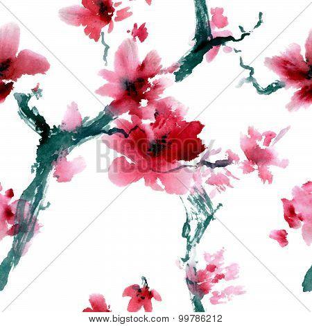 Sakura flower.