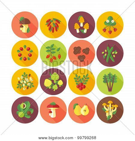 Set of flat design icons for fruits and vegetables.