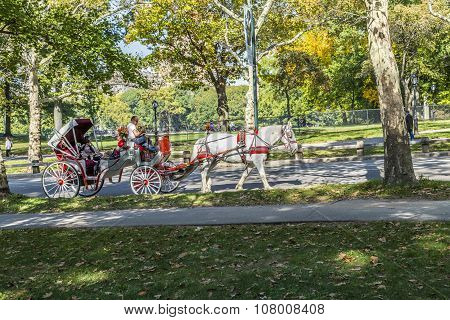 People Enjoy Carriage Ride In Central Park