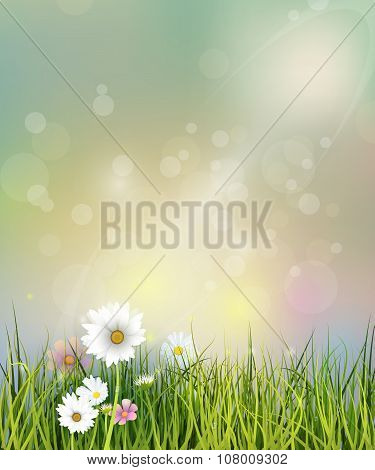 Vector Illustration Spring Nature Field With Green Grass