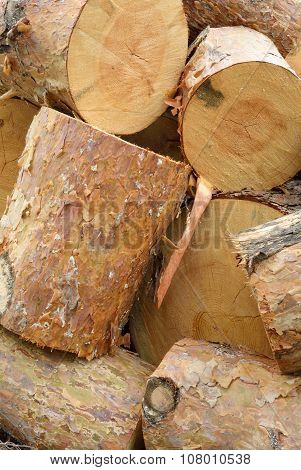 Heap Of Sawn Pine Logs Closeup View
