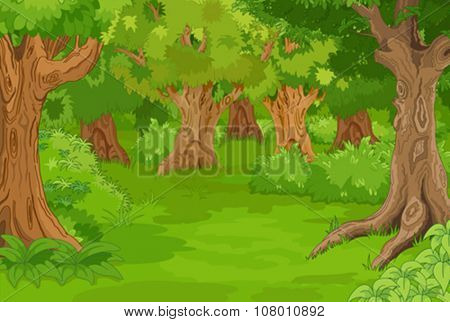 Illustration of amazing forest glade
