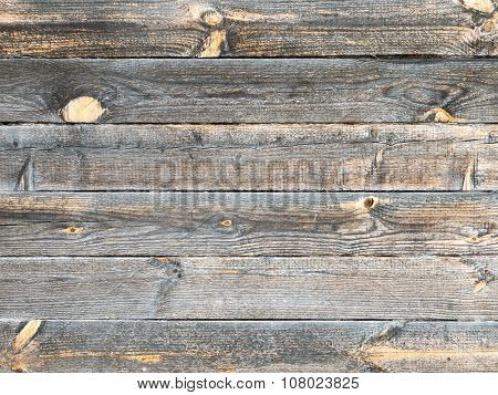 Old Pine Logs With Bright Knots