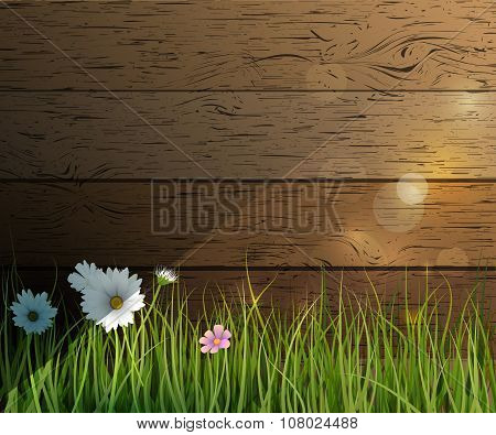 Vector Illustration Green Grass And Wildflowers- White Gerbera