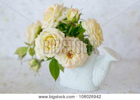 Beautiful cream-colored roses