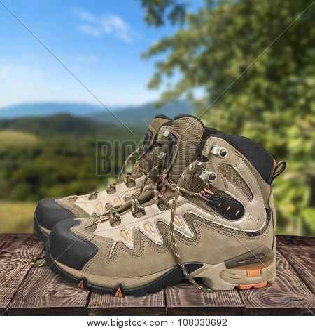 Hiking Boot.