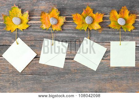 Autumn Leaves On Old Grunge Wood With A Empty Cards