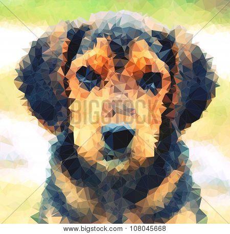 Polygonal Dog Head