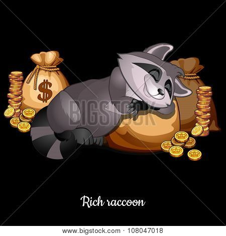Raccoon sleeping on bags of money and very happy, cartoon character on a black background