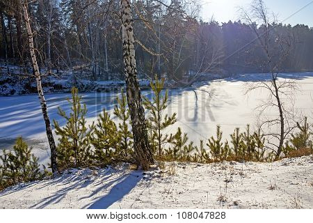 Winter came, the first snow. Russia, Siberia, Novosibirsk region, a small river flows into the Ob Sp