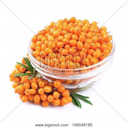 Sea-buckthorn Berries