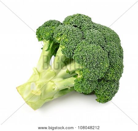Broccoli Close Up