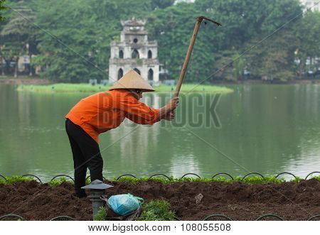 Asian gardener taking care of a new plant flower garden