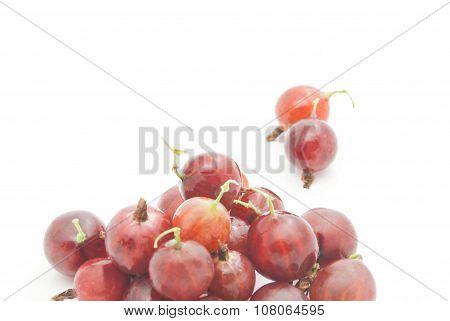 Some Red Gooseberries On White