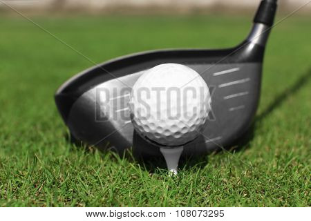 Golf club and ball on a green grass, close up