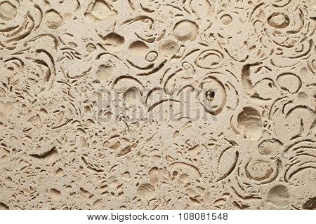 Coquina Background Texture.
