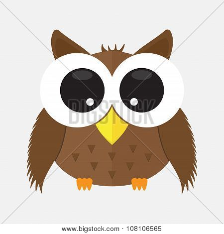 Owl Cartoon Character Animal