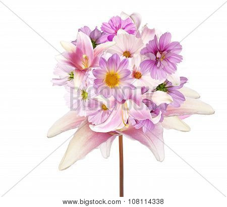 Beautiful assorted bouquet pink flowers  on white background isolated