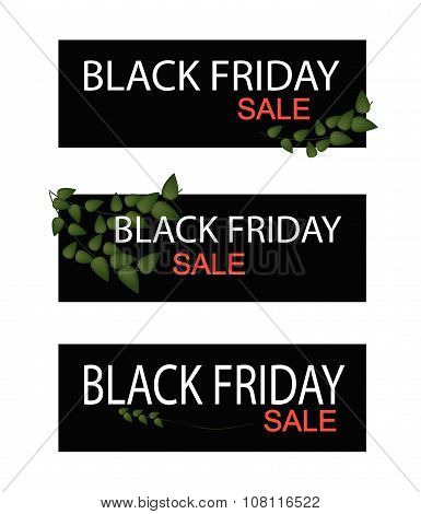 Creeper Plant On Black Friday Sale Banner