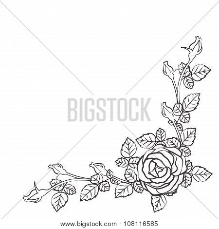 border of floral pattern