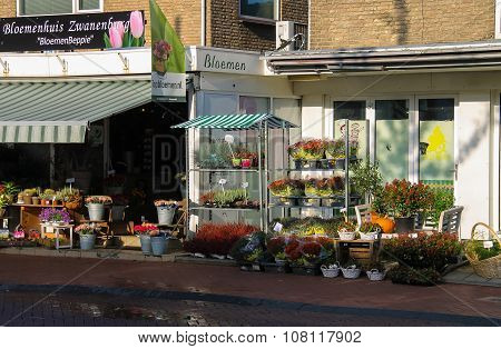 Baskets And Pots With Plants On The Shelves In Front Of The Flower Shop In  Zwanenburg, The Netherla