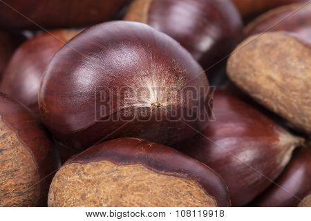 Background Of Some Fruits Of Sweet Chestnut, Close Up